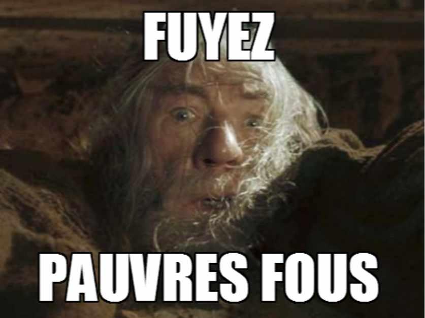 Gandalf disant Fuyez Pauvres Fous