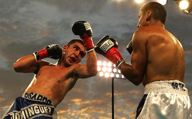 comment gagner de l'argent sur Internet grâce aux paris sportifs - deux boxeurs